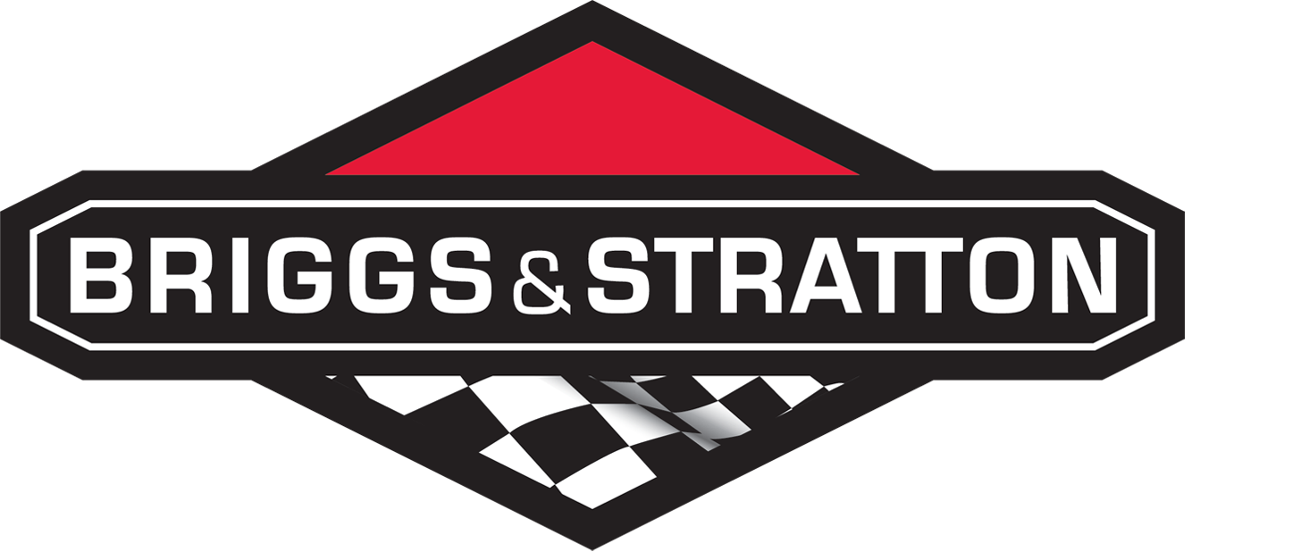 Briggs and Stratton Racing