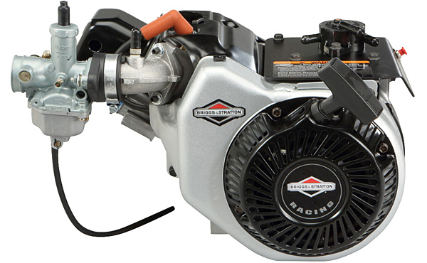 Briggs Amp Stratton World Formula Racing Engine